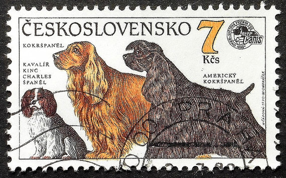 Postage stamp of similar spaniels